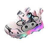 YWLINK Zapatillas De Deporte LED Para NiñOs, Zapatos Brillantes, Zapatos Ligeros,Calzado Deportivo,Calzado Casual,Zapatos De Escalada Al Aire Libre,Zapatillas De Dibujos Animados